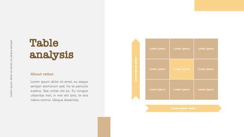 what is rattan Windows Keynote_30