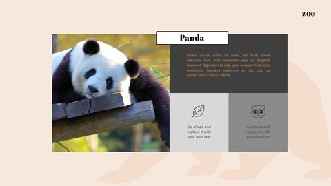 Zoo Google Slides Templates for Your Next Presentation_05