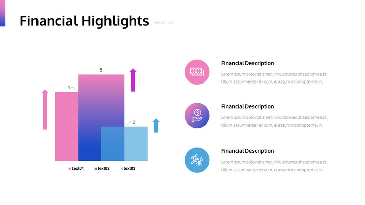 Financial Highlights PPT Slide Deck_02