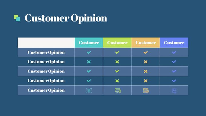 Customer Opinion Page Slide_01