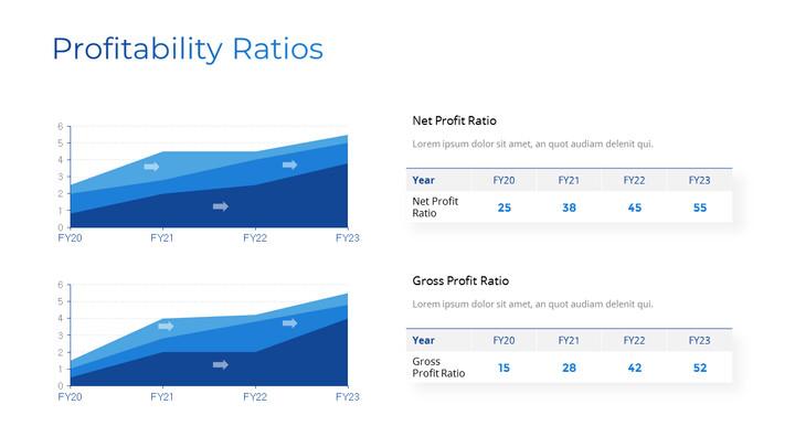 Profitability Ratios Page Design_01