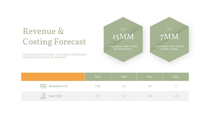 Revenue & Costing forecast Slide Layout_02
