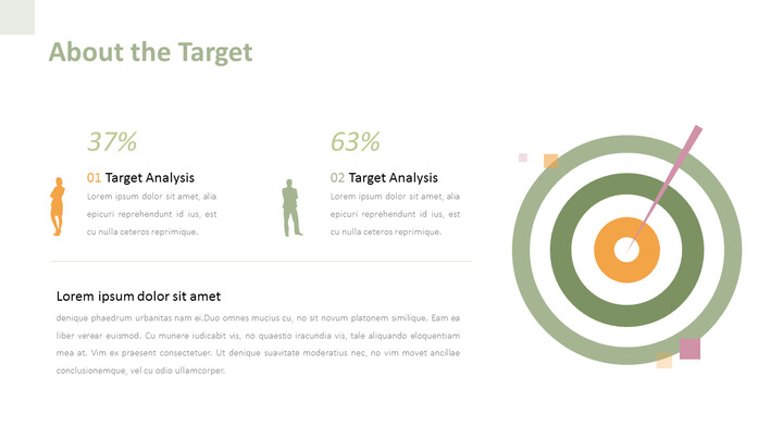 About the Target PPT Design_02