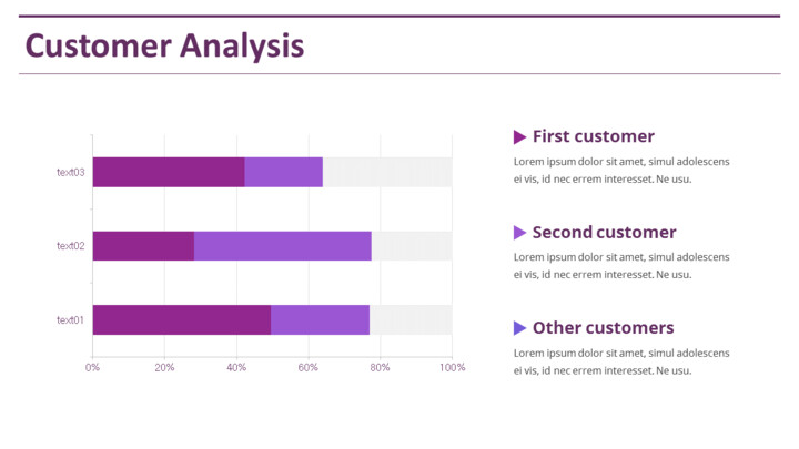 Customer Analysis Slide Deck Template_02