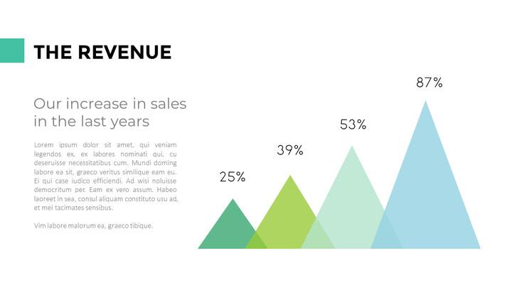 The Revenue Page Design_02