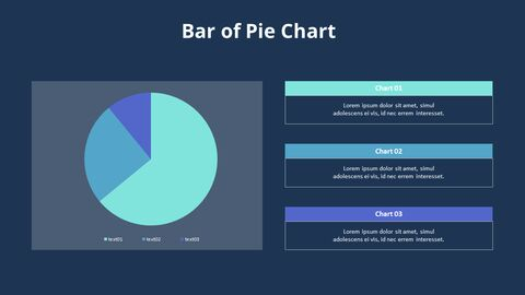 Pie Graph with Text Boxes_06