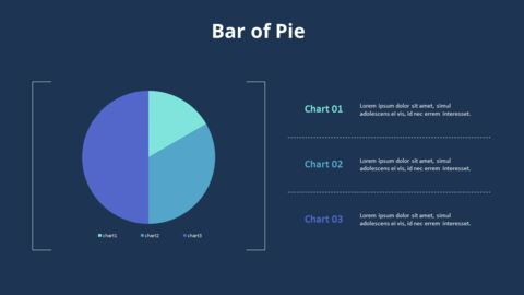 Pie Graph with Text Boxes_08