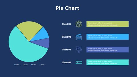 Pie Graph with Text Boxes_11