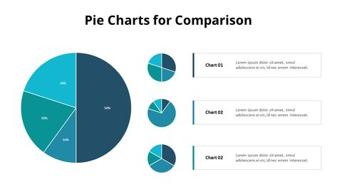 Three Pie Graphs with Explanation_03