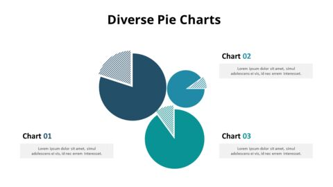 Three Pie Graphs with Explanation_05