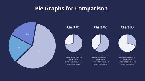 Three Pie Graphs with Explanation_10