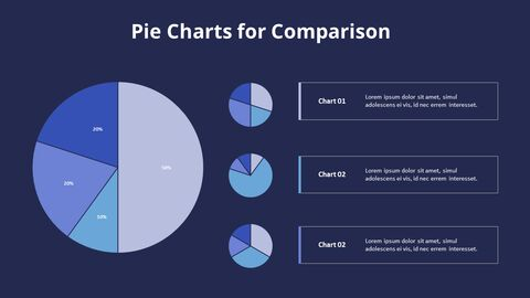 Three Pie Graphs with Explanation_11