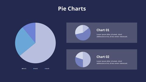 Three Pie Graphs with Explanation_12