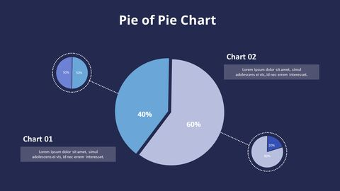 Three Pie Graphs with Explanation_14