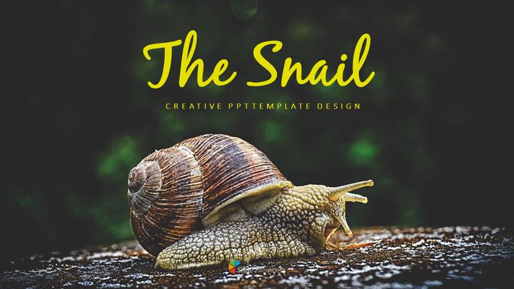 Snail Slide PPT_01