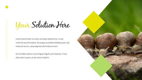 Snail Slide PPT_04