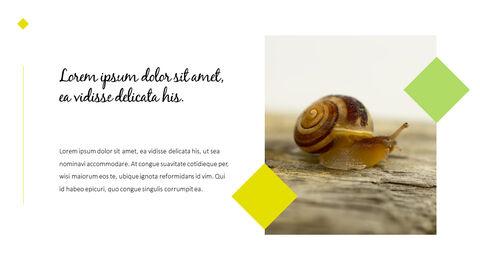 달팽이 슬라이드 PPT_07