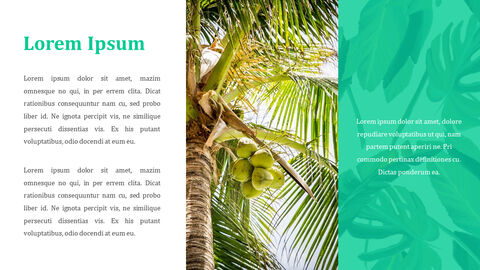 열대 과일 테마 PT 템플릿_14