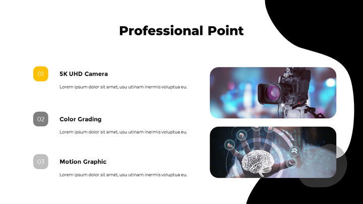 Professional Point_02