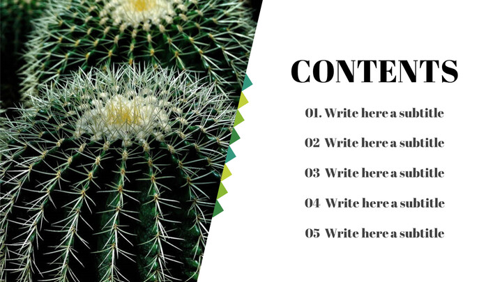 Simple Table of Contents Slide_01