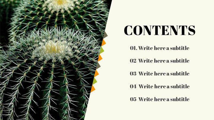 Simple Table of Contents Slide_02