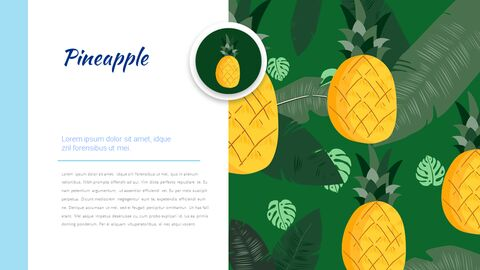 Summer Illustration Presentation Google Slides Templates_04