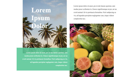 Tropical Fruits iMac Keynote_04