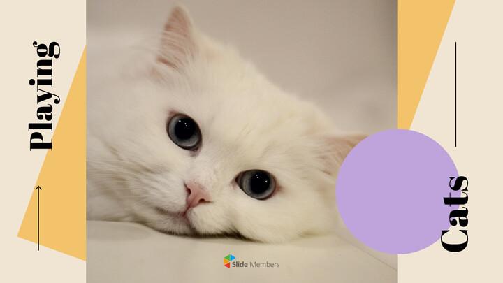 고양이 키우기 프레젠테이션_01