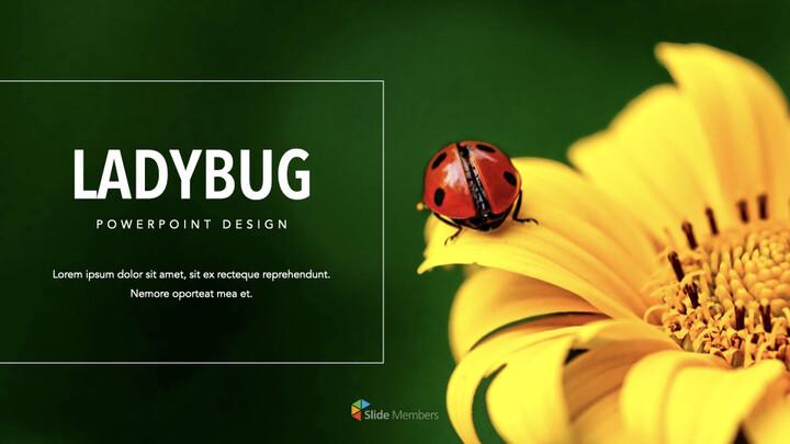 Ladybug Keynote for Windows_01