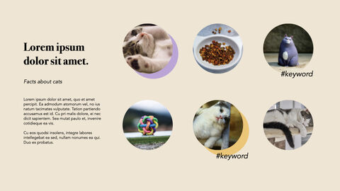 Raise a Cat Keynote Templates_06