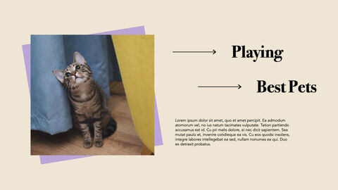 Raise a Cat Keynote Templates_09