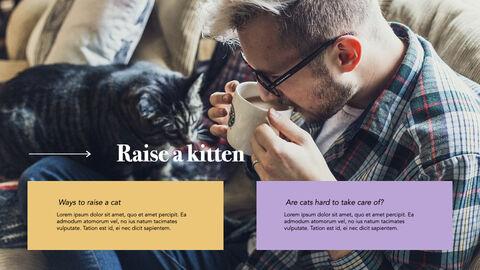 Raise a Cat Keynote Templates_13