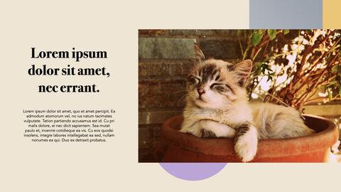 Raise a Cat Keynote Templates_21