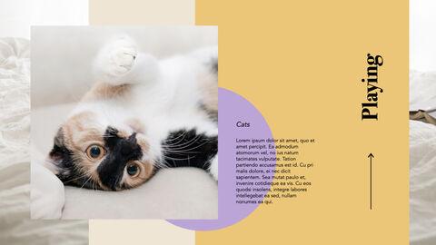 Raise a Cat Keynote Templates_25