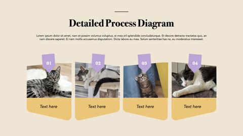 Raise a Cat Keynote Templates_29