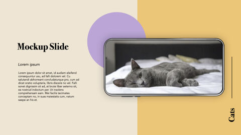 Raise a Cat Keynote Templates_39