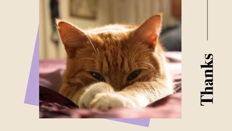 Raise a Cat Keynote Templates_40