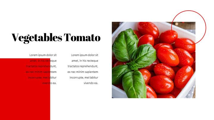 토마토 편집이 쉬운 PPT 템플릿_02