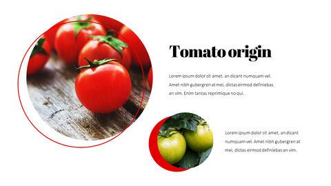 토마토 편집이 쉬운 PPT 템플릿_05