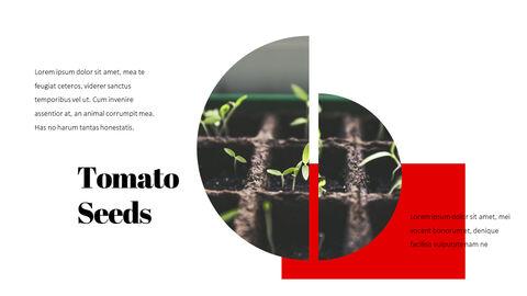 토마토 편집이 쉬운 PPT 템플릿_23