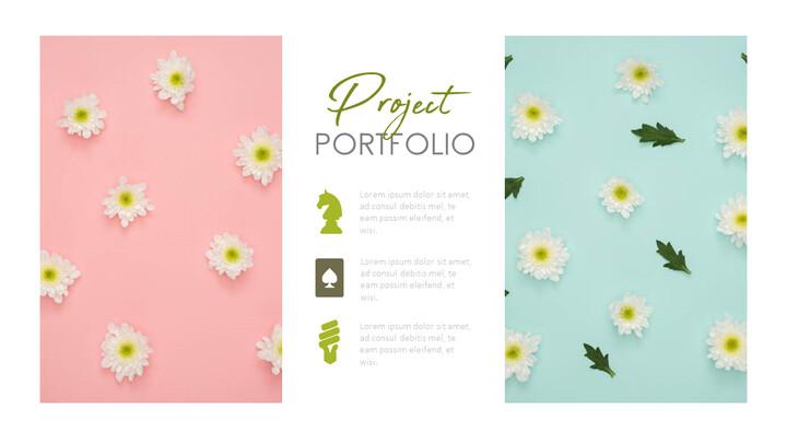 Project Portfolio Slide Deck_02