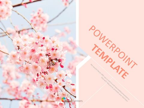 Cherry Blossom Ending - Free Presentation Templates_01