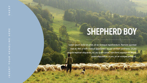 Sheep PowerPoint for mac_04