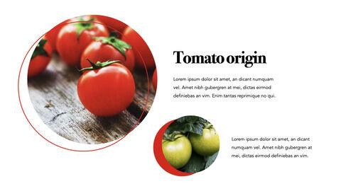 토마토 키노트 템플릿_05