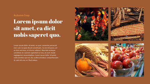 가을 작물 베스트 PPT 슬라이드_04