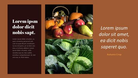 가을 작물 베스트 PPT 슬라이드_11