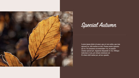 Fall Keynote Examples_03