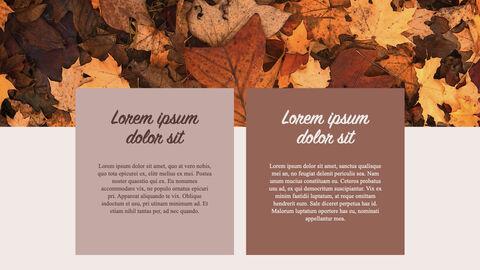 Fall Keynote Examples_04