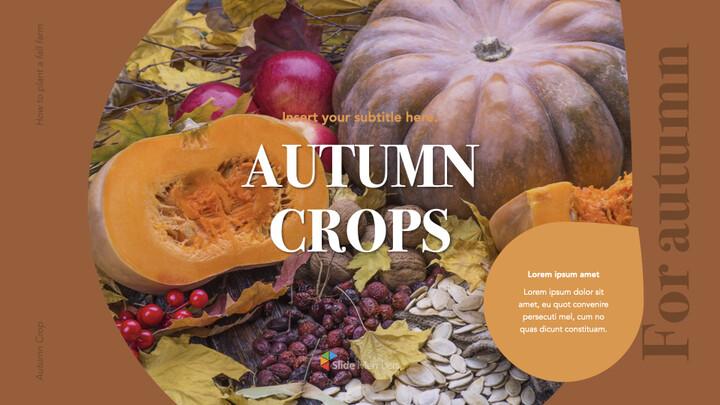 Autumn Crops Windows Keynote_01
