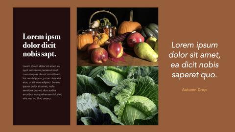 Autumn Crops Windows Keynote_11